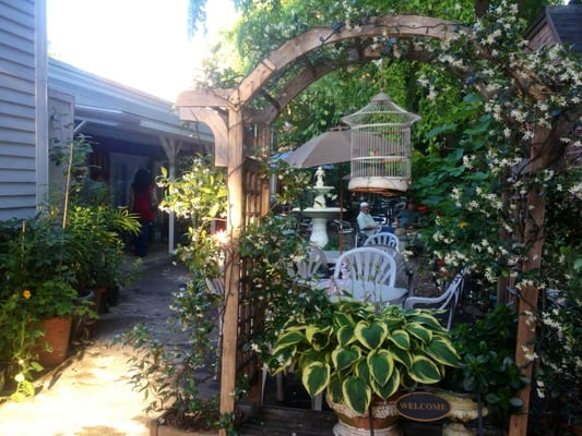 Kasbah Garden Cafe New Haven Ct