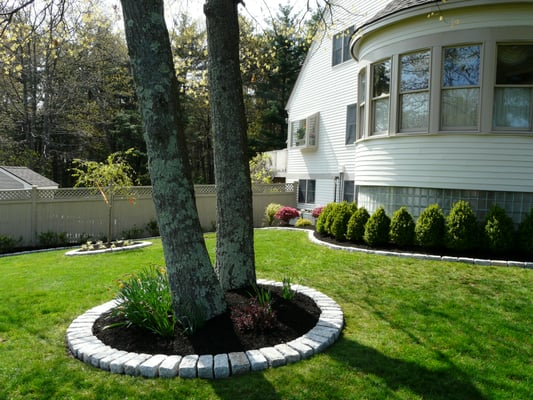 Done right landscape jumbo cobblestone border around - Landscaping around a tree ...