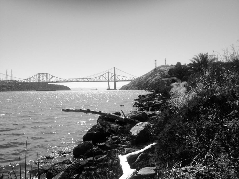 By the marina yelp for Benicia fishing report