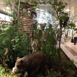 Ausstellung Faszination Wald