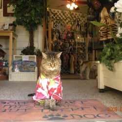 Trucare Pet Sitting Boutique & Dog Training - Claremont, CA, États-Unis. Missy, Retired after 13 years as greeter cat