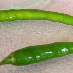 Tang. Piments verts frais