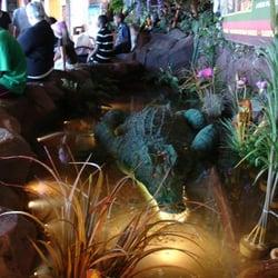 Rainforest Cafe Atlantic City Closing