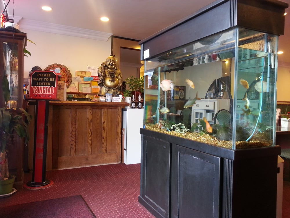 Front desk and their fish tank at their front entrance yelp for Fish tank desk