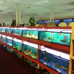 bangkok aquarium pet supply closed pet stores san