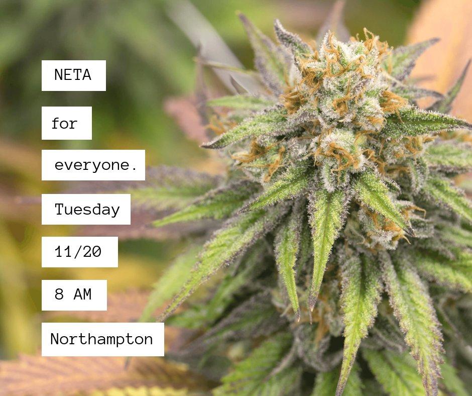 NETA New England Treatment Access - 84 Photos & 60 Reviews