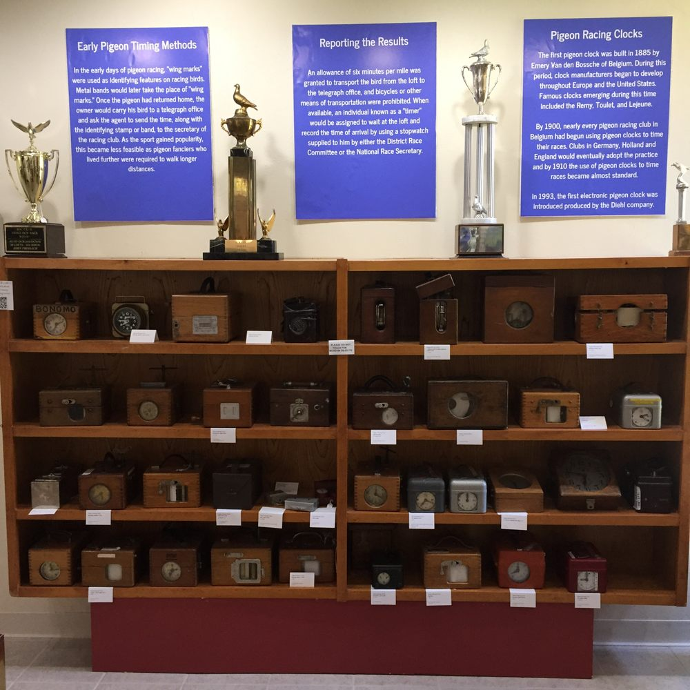 The American Pigeon Museum and Library