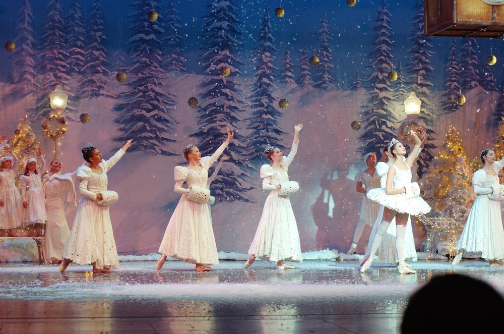 AMERICAN ACADEMY OF BALLET AND DANCE: 491 W Klein Rd, Williamsville, NY