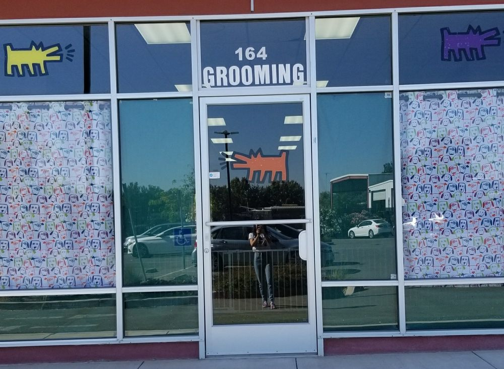 Dog Grooming by Kumar Rane: 2090 Warm Springs Ct, Fremont, CA