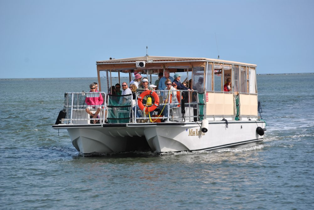 Amelia River Cruises & Charters: 1 North Front St, Fernandina Beach, FL