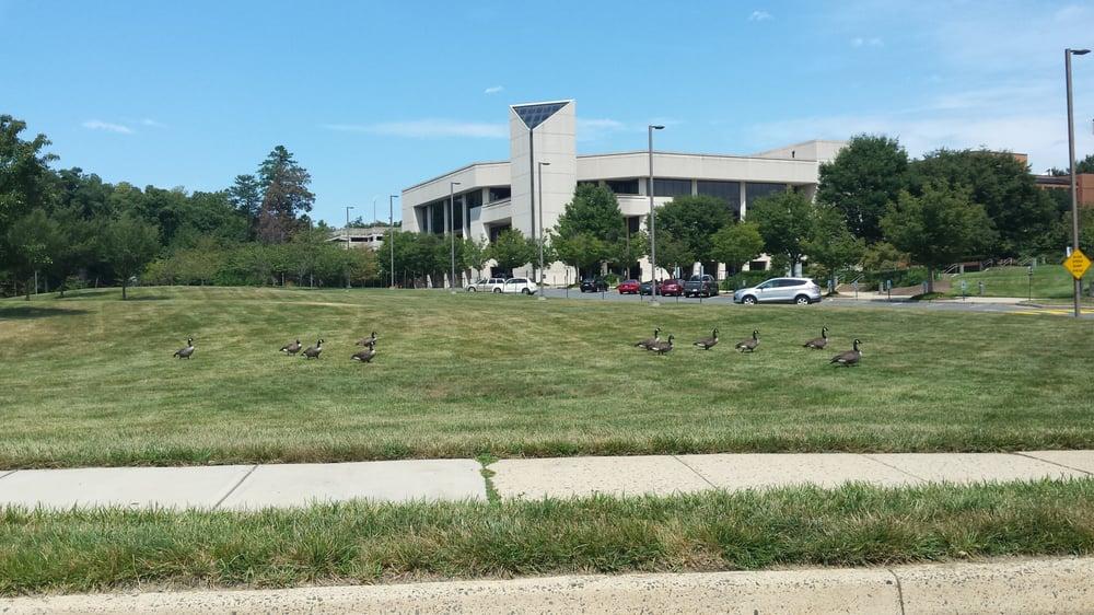 George Mason University's Center for the Arts: 4400 University Dr, Fairfax, VA