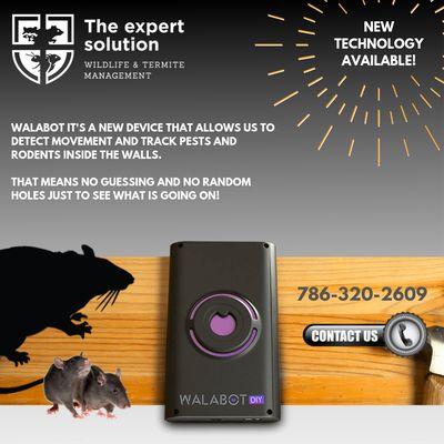 Rat Expert Solutions