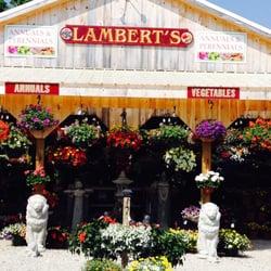 Lamberts Garden Center Nurseries Gardening 1 Cape Rd Mendon