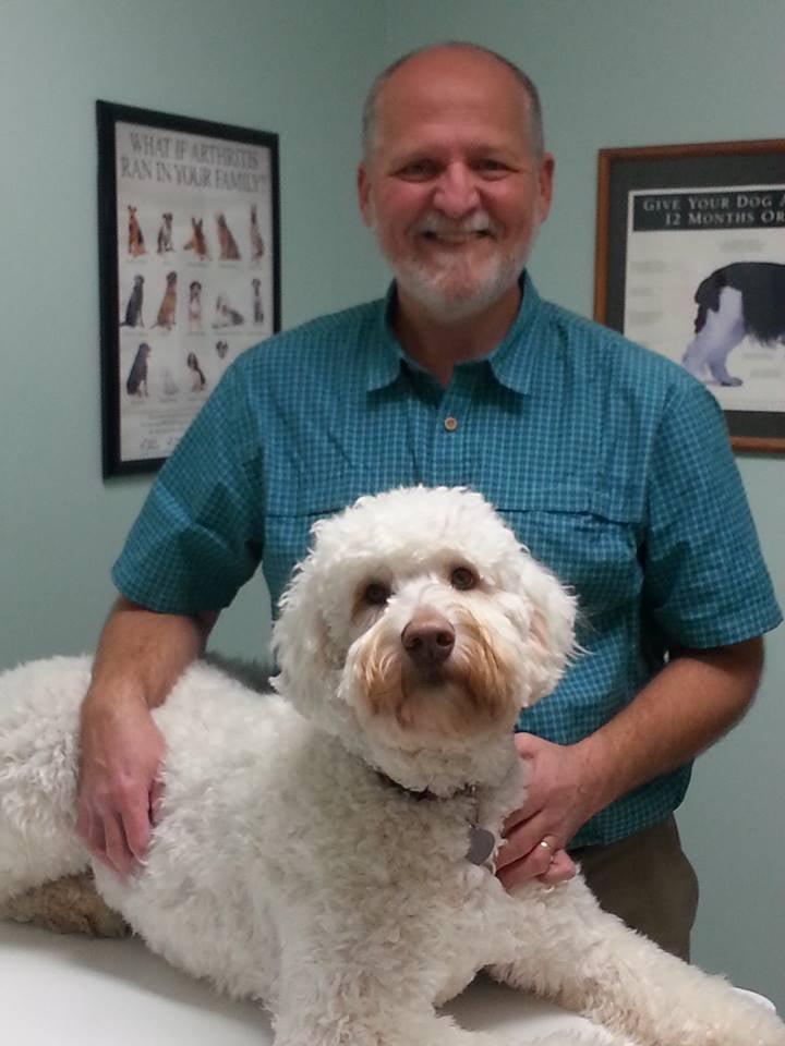 Molitor Pet & Bird Clinic: 108 N Pine St, Burlington, WI