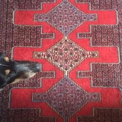Ali Sharifi Rugs Rugs 1011 Sw Washington St Downtown Portland