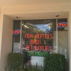 Treasure chest aquarium pets closed pet stores for Fish store san francisco