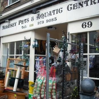 Molesey Pet & Aquatic Centre - Pet Stores - 69 Walton Road, East ...
