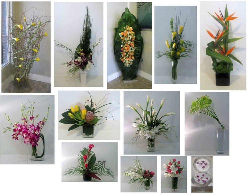 Modern Petals Blog: Photos For Modern Petals
