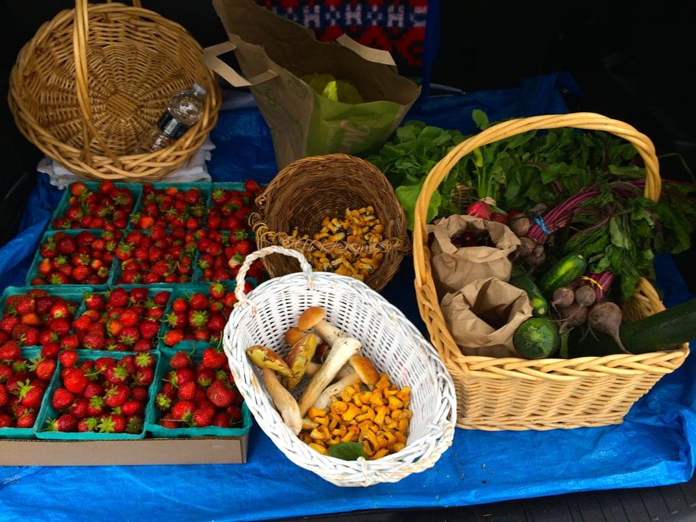 Bohringer's Fruit Farm: 3992 State Route 30, Middleburgh, NY