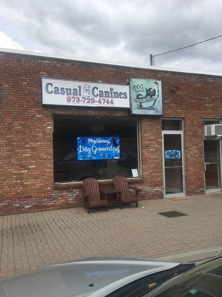Casual Canines: Ogdensburg, NJ