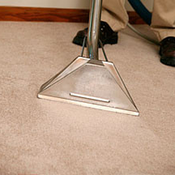 Urista S Carpet Cleaning Cleaner Cleaning Services