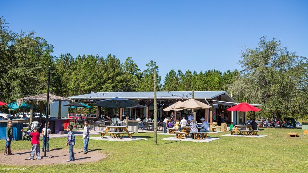 One Cafe Gainesville Fl