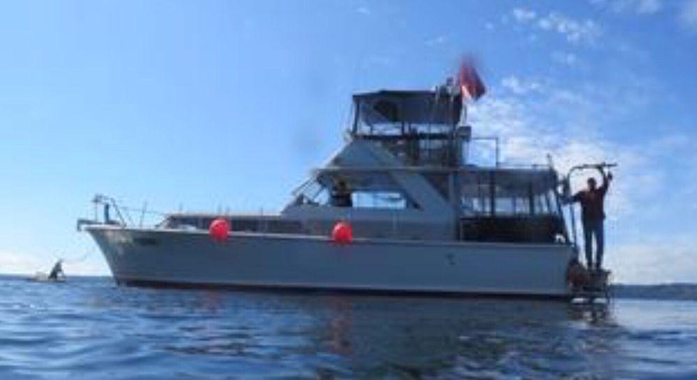 Sea Ya Diving WA: 5618 Marine View Dr, Tacoma, WA