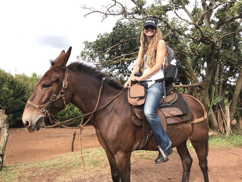 Molokai Mule Ride: 100 Kalae Hwy, Kualapuu, HI