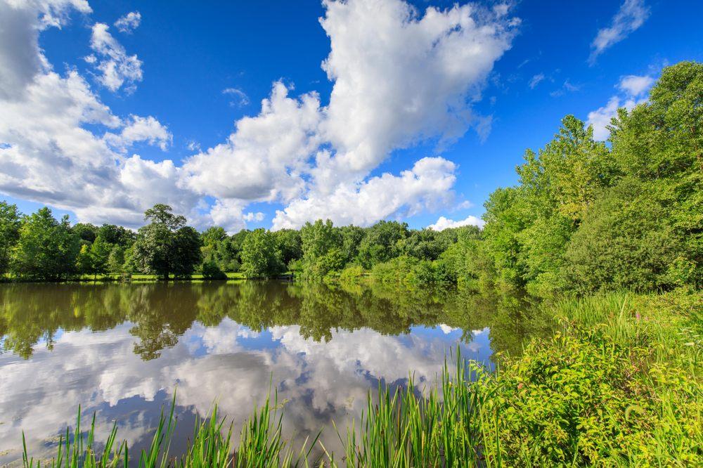 Pascack Brook County Park: 150 Emerson Rd, Westwood, NJ