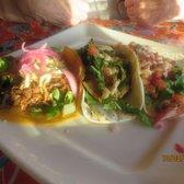 Delphina coastal cuisine 45 photos 40 reviews for Fish head cantina menu