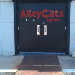 Alley cats salon front doors yelp for 9309 salon oklahoma city