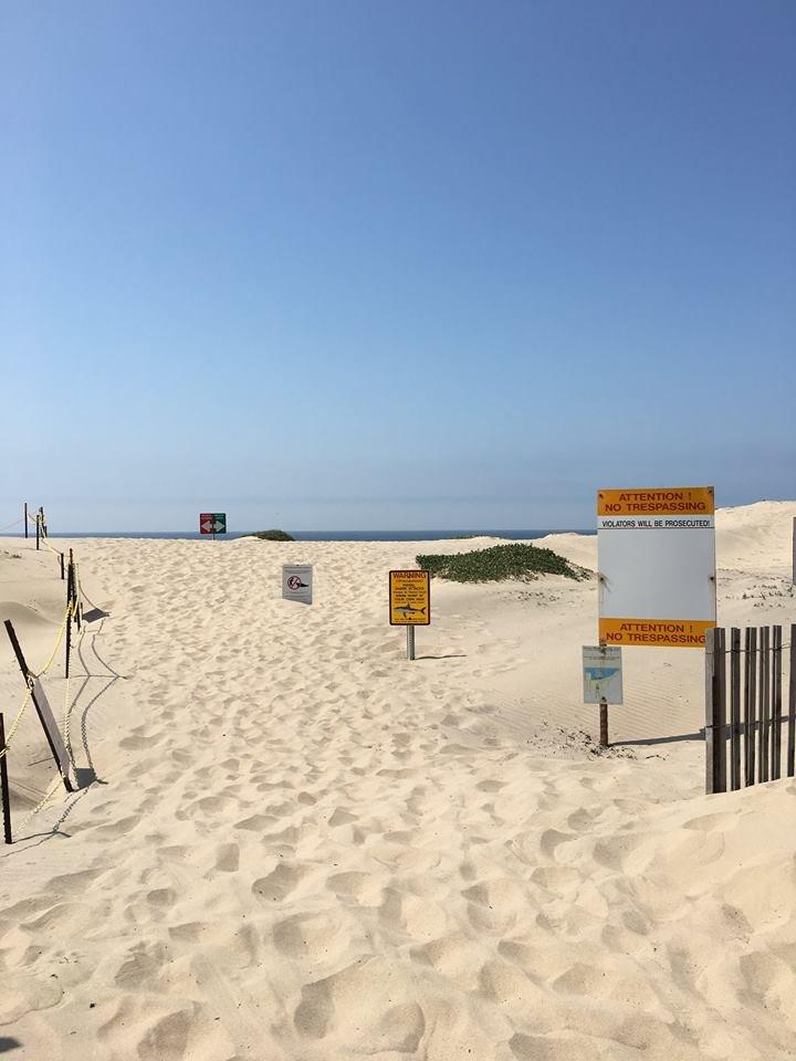 Minuteman Beach: Casmalia Beach Rd, Vandenberg Air Force Base, CA