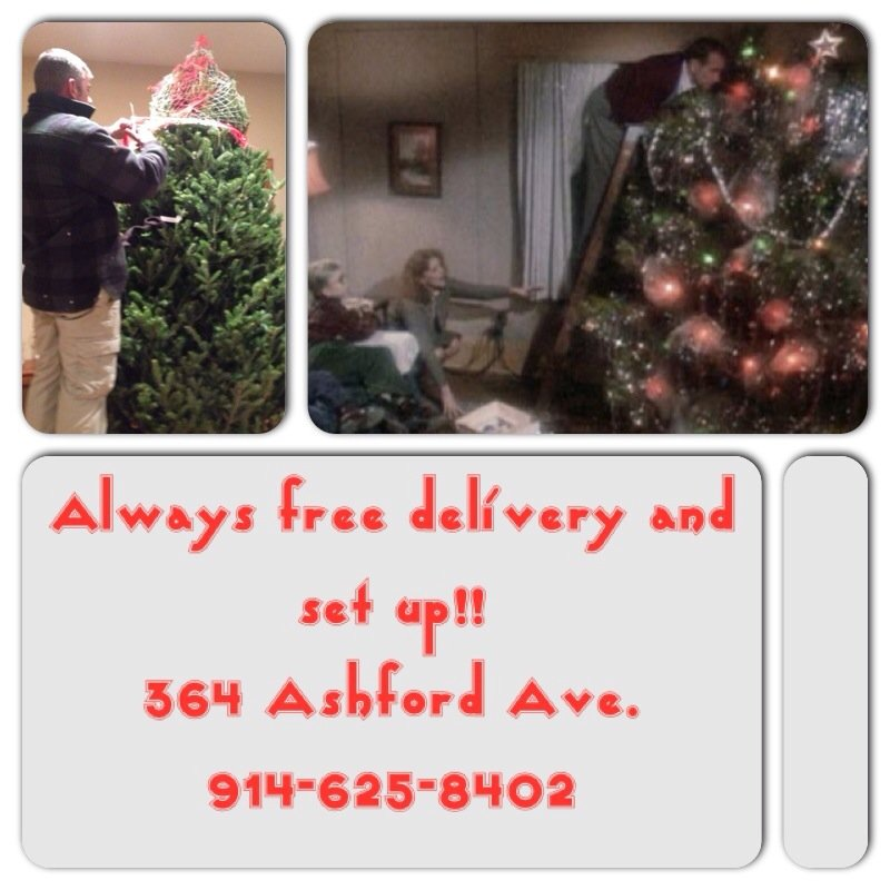 Dobbs Ferry Christmas Trees and Wreaths: 364 Ashford Ave, Dobbs Ferry, NY