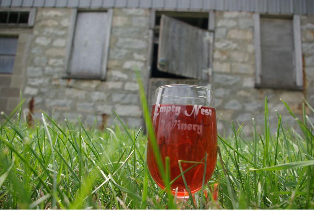 Empty Nest Winery: 1352 Apple Rd, Waukon, IA