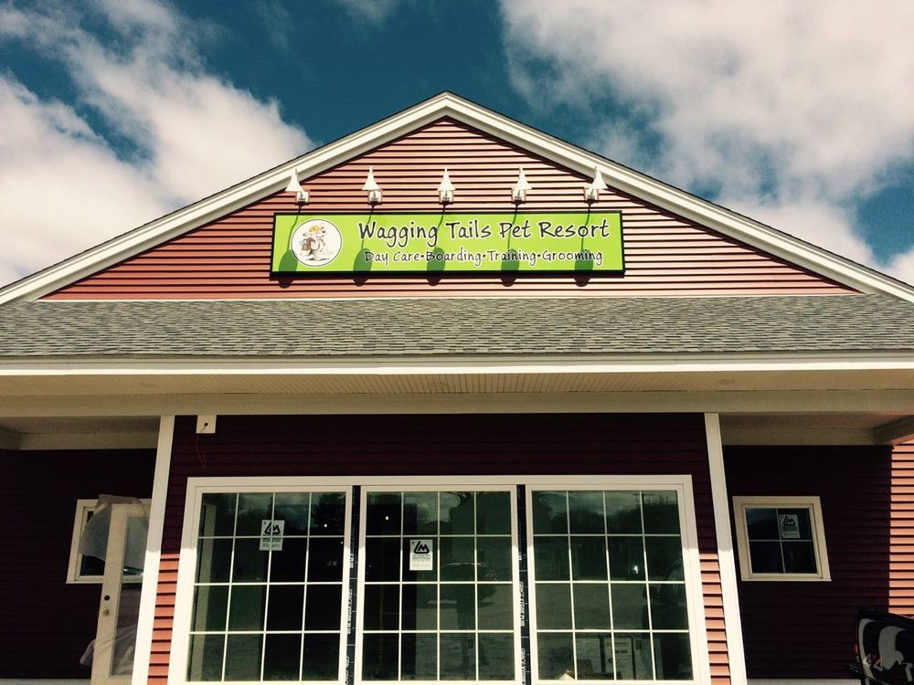 Wagging Tails Pet Resort: 220 Russell St, Hadley, MA