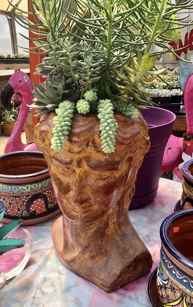 Bobo's Nursery & Florist: 3765 W US Hwy 79, Buffalo, TX