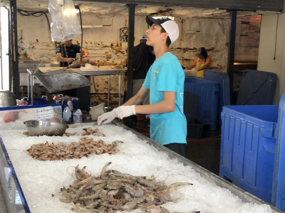 Katie s seafood market 66 photos 71 reviews seafood for Galveston fish market