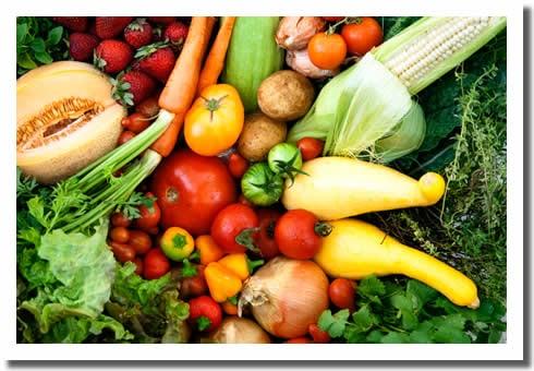 Freshness Farms: San Jose, CA