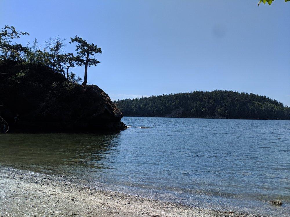 Teddy Bear Cove: Bellingham, WA