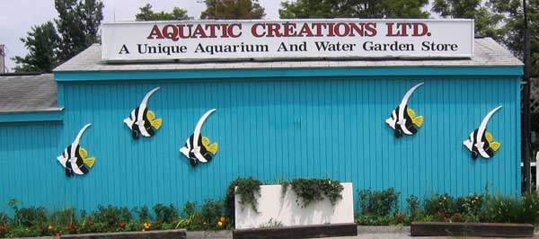 Aquatic Creations Ltd: 2909 Urbana Pike, Ijamsville, MD