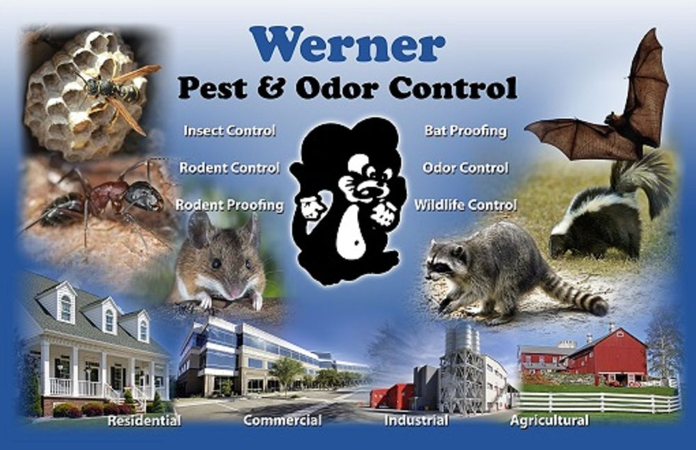 Werner Pest & Odor Control Services: 916 N Main St, Seymour, WI