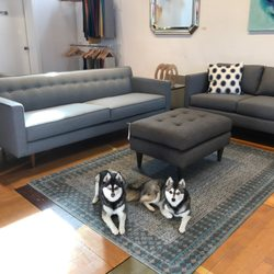 Lovely Photo Of COUCH   Houston, TX, United States. Klee Kai Sisters. Couches