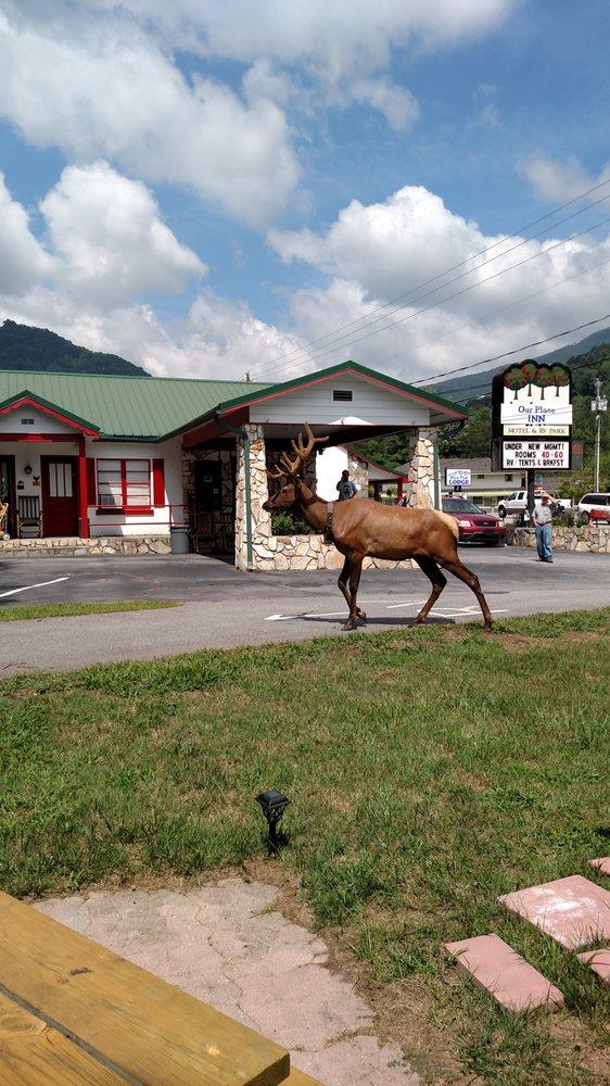Our Place Inn: 4077 Soco Rd, Maggie Valley, NC