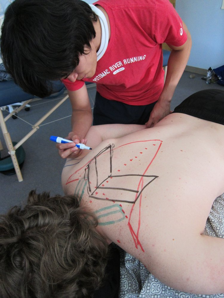 Creative Ways To Learn Anatomy At The Boulder Massage Therapy