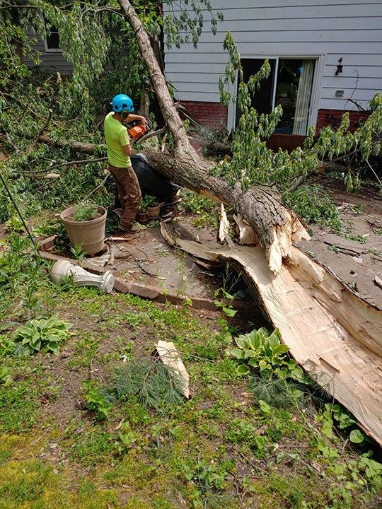 Hometown Tree Service: Montville, OH