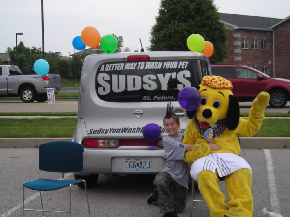 Sudsy's Muddy Paw Wash: 4869 Mexico Rd, Saint Peters, MO