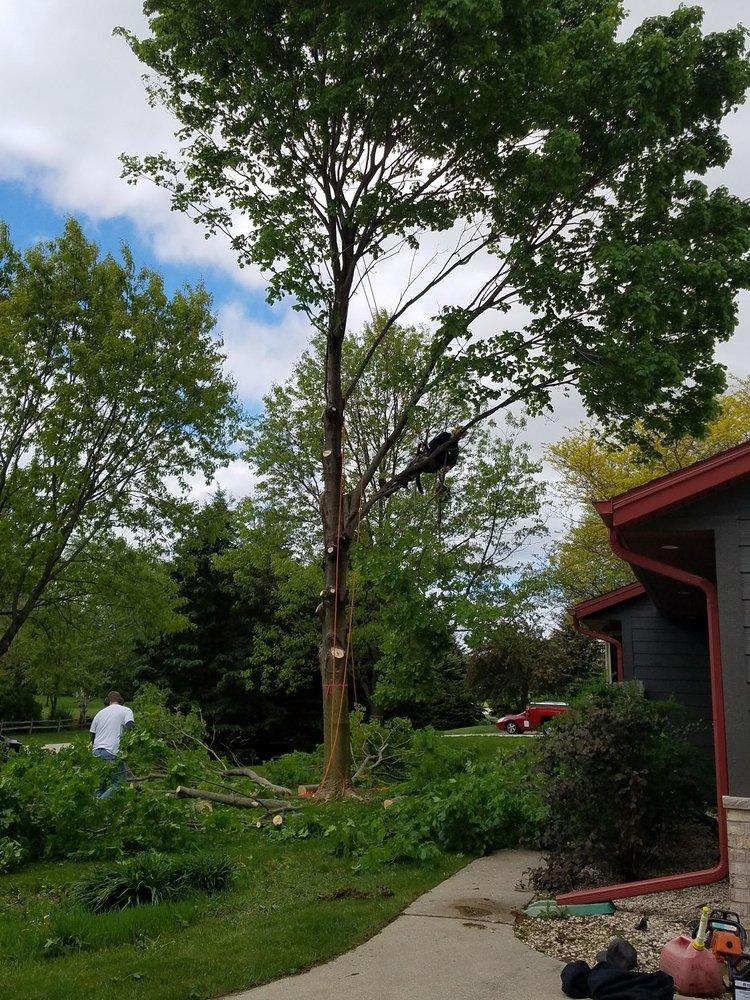 Kusch Tree Service: N6496 County Highway Dd, Burlington, WI