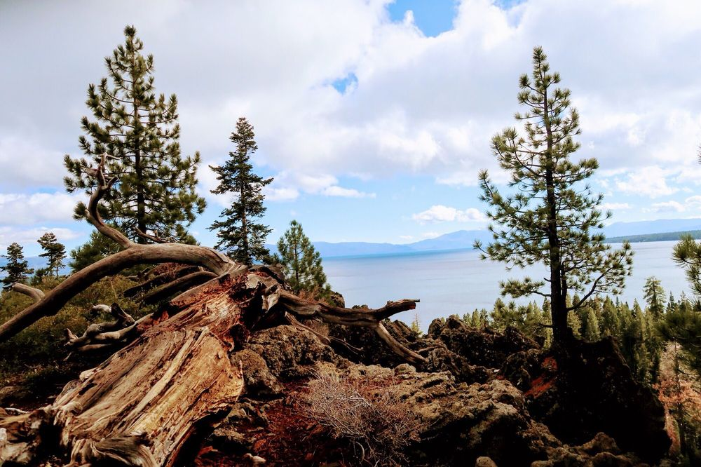 Eagle Rock: Volcanic Outcropping And Hiking Trl, Sunnyside-Tahoe City, CA