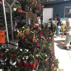 Bunnings Warehouse - Hardware Stores - Cnr Parramatta Rd