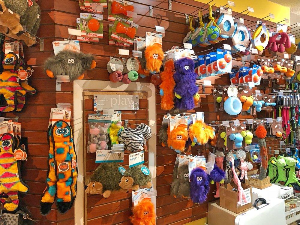 Earth Pets Natural Pet Market: 11740-1 San Jose Blvd, Jacksonville, FL